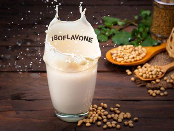 Mầm đậu nành chứa dưỡng chất Isoflavon tốt cho cơ thể