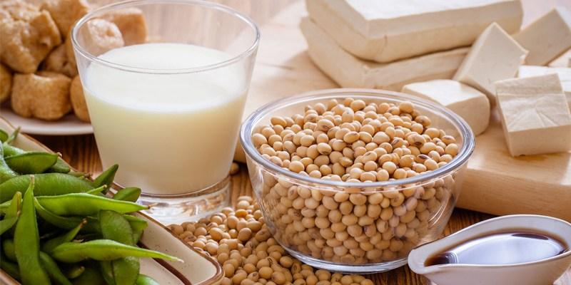 cách làm sữa mầm đậu nành tươi, cách làm sữa mầm đậu nành tăng vòng 1, cách làm sữa mầm đậu nành ngon, cách làm sữa từ mầm đậu nành,