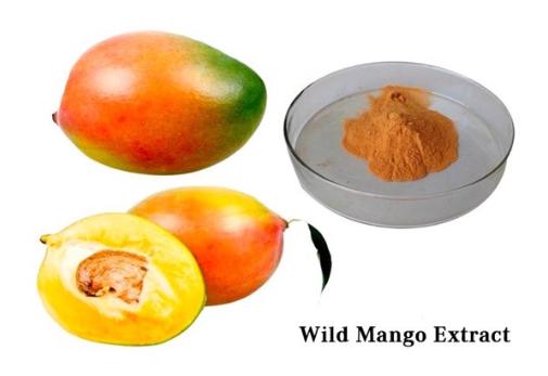 Thạch xoài giảm cân Hàn Quốc có tốt không review Webtretho, thạch xoài giảm cân mango jelly, thạch xoài giảm cân hàn quốc, thạch xoài giảm cân hàn quốc có tốt không, thạch xoài giảm cân hàn quốc review, review thạch xoài giảm cân mango jelly, thạch xoài giảm cân mango jelly có tốt không, thạch xoài giảm cân có hiệu quả không, thạch xoài giảm cân review, thạch xoài giảm cân có tốt không, thạch xoài giảm cân giá bao nhiêu, thạch xoài giảm cân wild mango jelly
